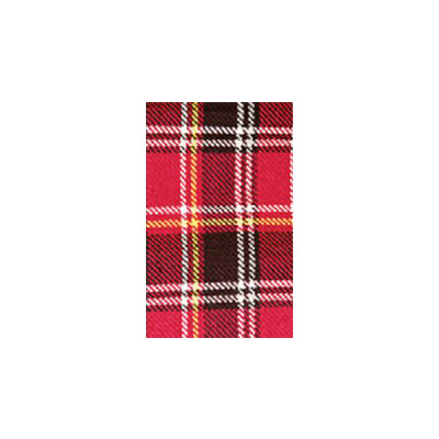 Picnic Blanket - Carefree - Waterproof PVC Backing - Burgundy Plaid